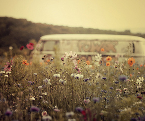 flowers, hippie, and vintage image