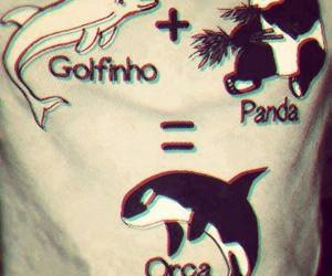 orcas, cute, and pandas image