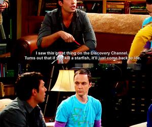 sheldon cooper, big bang theory, and funny image