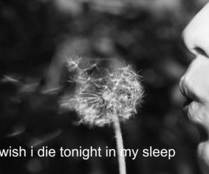 die, wish, and sleep image