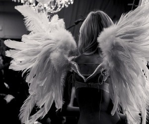 angel, wings, and model image