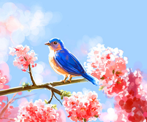 bird, blue, and spring image