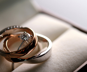 rings, ring, and wedding image
