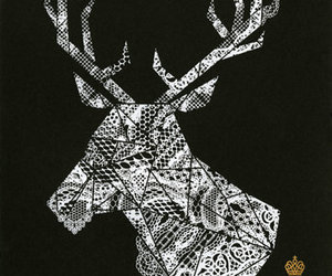 antlers, deer, and lace image