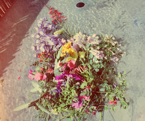 colors, flowers, and fun image