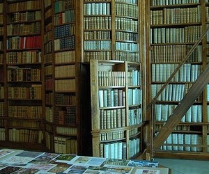 book, secret, and book shelve image