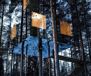 mirror, tree, and sweden image