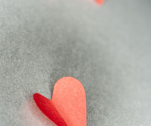 fotografie, heart, and hearts image