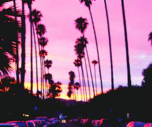 pink, beach, and header image