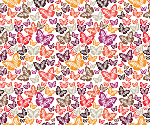 butterflies, colors, and backgrounds image