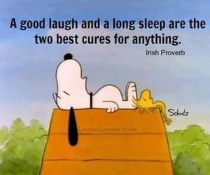laugh, quotes, and snoopy image