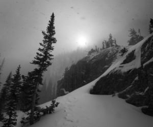 black and white, cold, and photography image