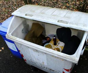 grunge, pale, and trash image