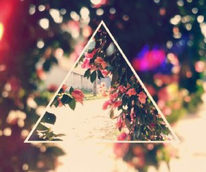 flowers, triangle, and hipster image