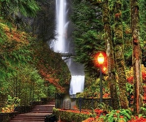 oregon and columbia river gorge image