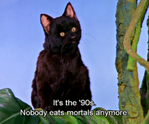 90s, sabrina the teenage witch, and cat image