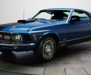 beautiful, blue, and mustang image