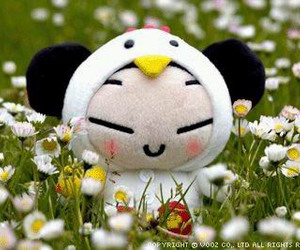 pucca image