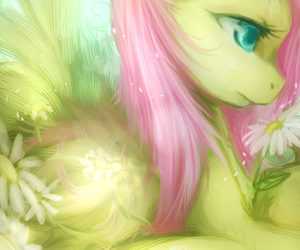 pony, my little pony, and fluttershy image