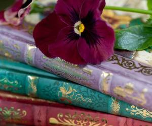 ••books•• image