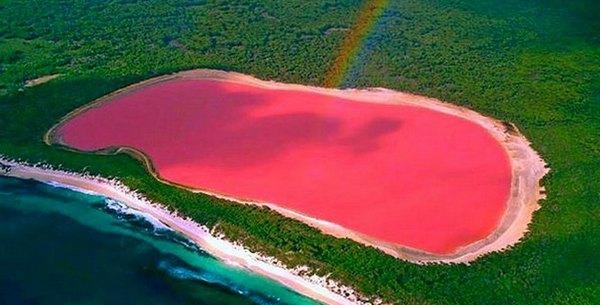 australia, pink, and beautiful image