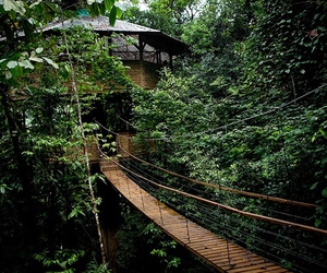 travel and costa rica image