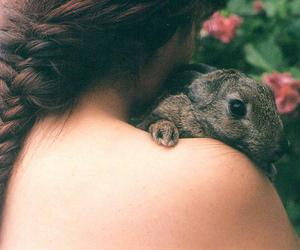 girl, hair, and rabbit image
