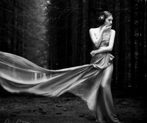 dress, model, and woods image