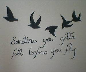 birds, my room, and sleeping with sirens image