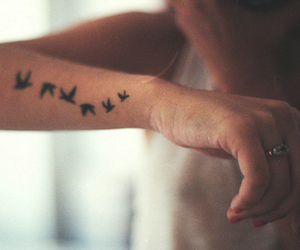 arm, birds, and cute image