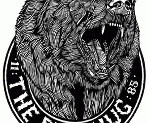 bear, graphic, and black image
