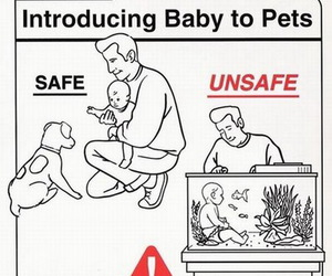 baby, pet, and funny image