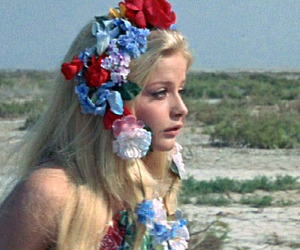 flowers, ewa aulin, and candy image