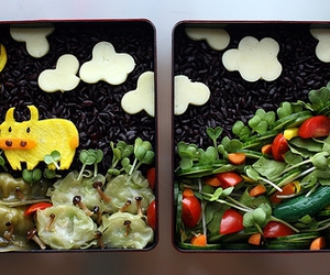 bento, field of flowers, and food image