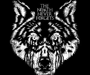 game of thrones, wolf, and north image