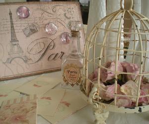 paris, rose, and vintage image