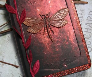 autumn, books, and dragonfly image