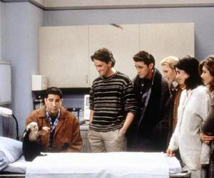 friends, monkey, and chandler bing image