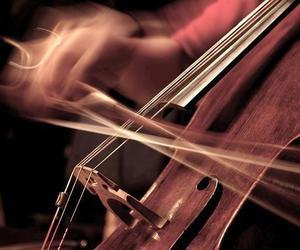 cello, paixão, and s2 image