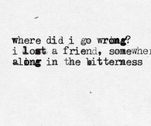 quote, the fray, and bitterness image