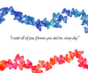 beautiful, text, and butterflys image