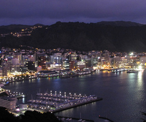 city, lights, and new zealand image