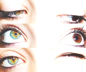 amazing, brown, and eyes image