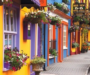 ireland, street, and flowers image