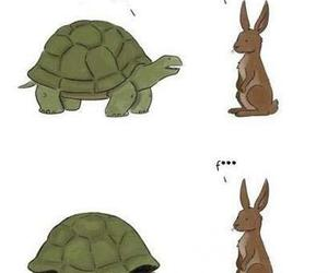 funny, rabbit, and tortule image