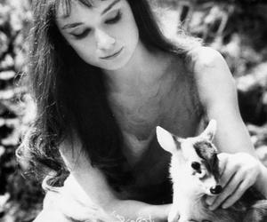 audrey hepburn, deer, and black and white image