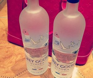 vodka, party, and grey goose image