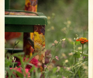 camp, colorful, and garden image