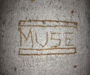 muse and museic image