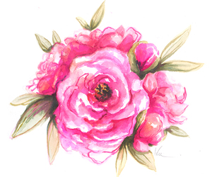 draw, peonies, and flowers image